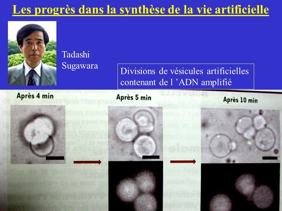 Les progrès dans la synthèse de la vie artificielle Tadashi Sugawara Divisions de vésicules artificielles contenant de l ADN amplifié