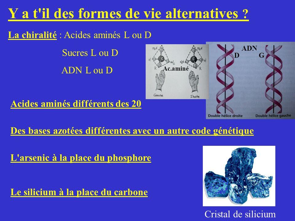 Y a t'il des formes de vie alternatives ? La chiralité : Acides aminés L ou D Sucres L ou D ADN L ou D Acides aminés différents des 20 Des bases azoté