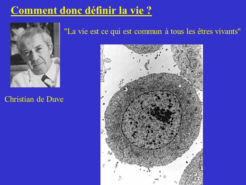 La biologie synthétique : 2 voies de recherche 1 / La voie descendante : Les manipulations génétiques 2 / La voie ascendante : Fabrication d une cellule artificielle