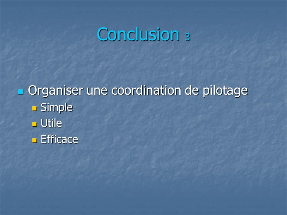 Conclusion 3 Organiser une coordination de pilotage Organiser une coordination de pilotage Simple Simple Utile Utile Efficace Efficace