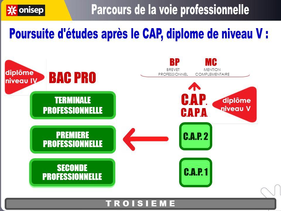 T R O I S I E M E BAC PRO diplôme niveau IV PREMIERE PROFESSIONNELLE TERMINALE PROFESSIONNELLE diplôme niveau V C.A.P.C.A.P.A.C.A.P.C.A.P.A. C.A.P. 1