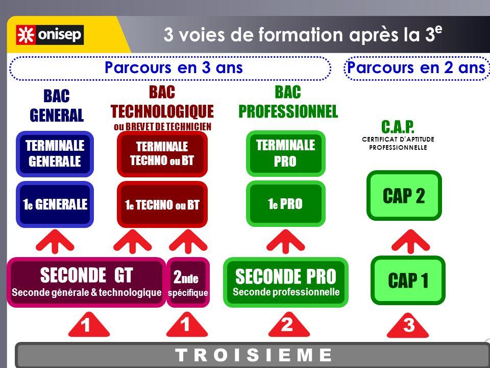 T R O I S I E M E SECONDE GT Seconde générale & technologique 1 2 3 BACCALAUREAT GENERAL ou BACCALAUREAT TECHNOLOGIQUE BACCALAUREAT PROFESSIONNEL C.A.P.