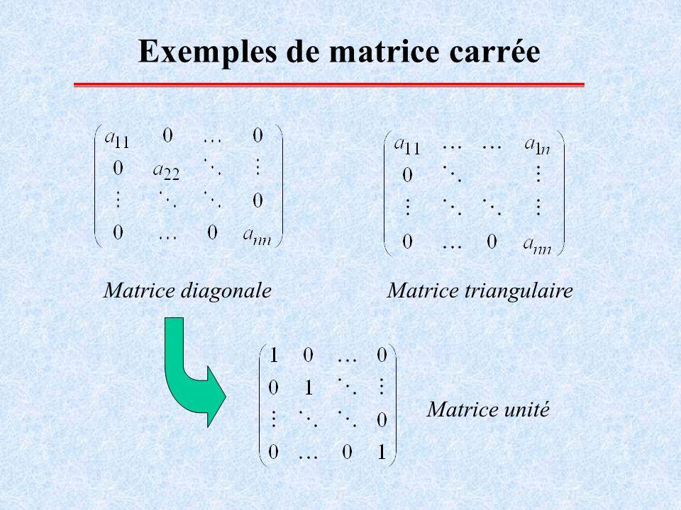 Transposé d une matrice