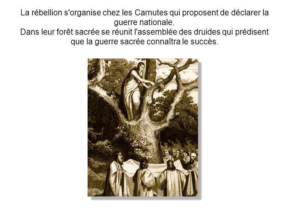 La rébellion s'organise chez les Carnutes qui proposent de déclarer la guerre nationale. Dans leur forêt sacrée se réunit l'assemblée des druides qui