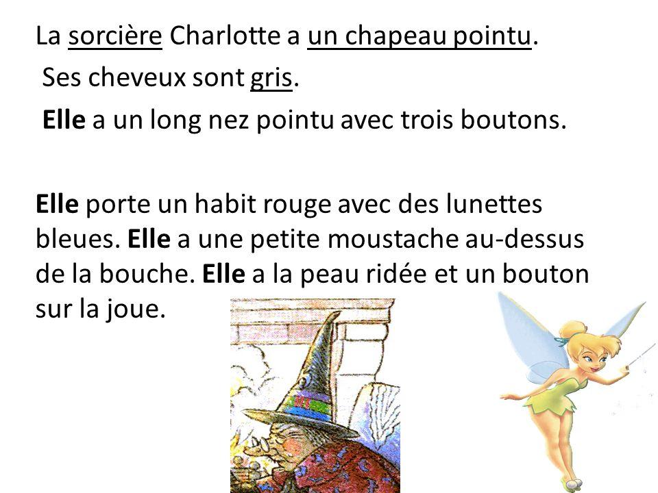 La sorcière Charlotte a un chapeau pointu. Ses cheveux sont gris. Elle a un long nez pointu avec trois boutons. Elle porte un habit rouge avec des lun
