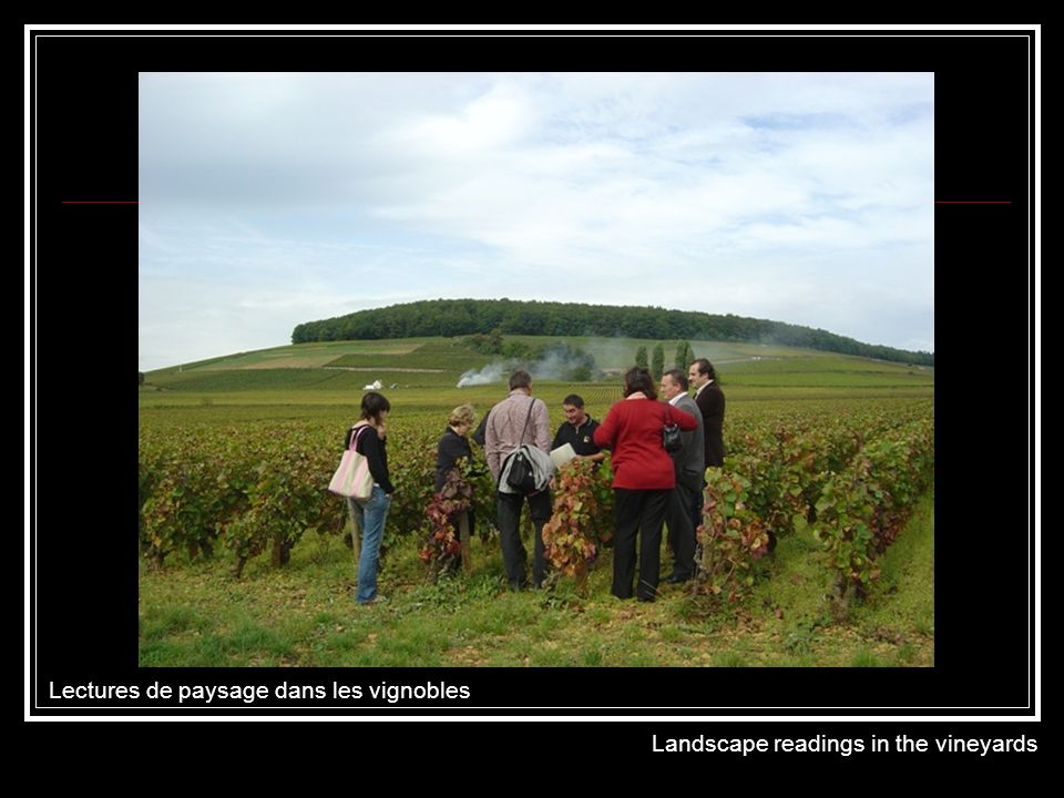 Lectures de paysage dans les vignobles Landscape readings in the vineyards
