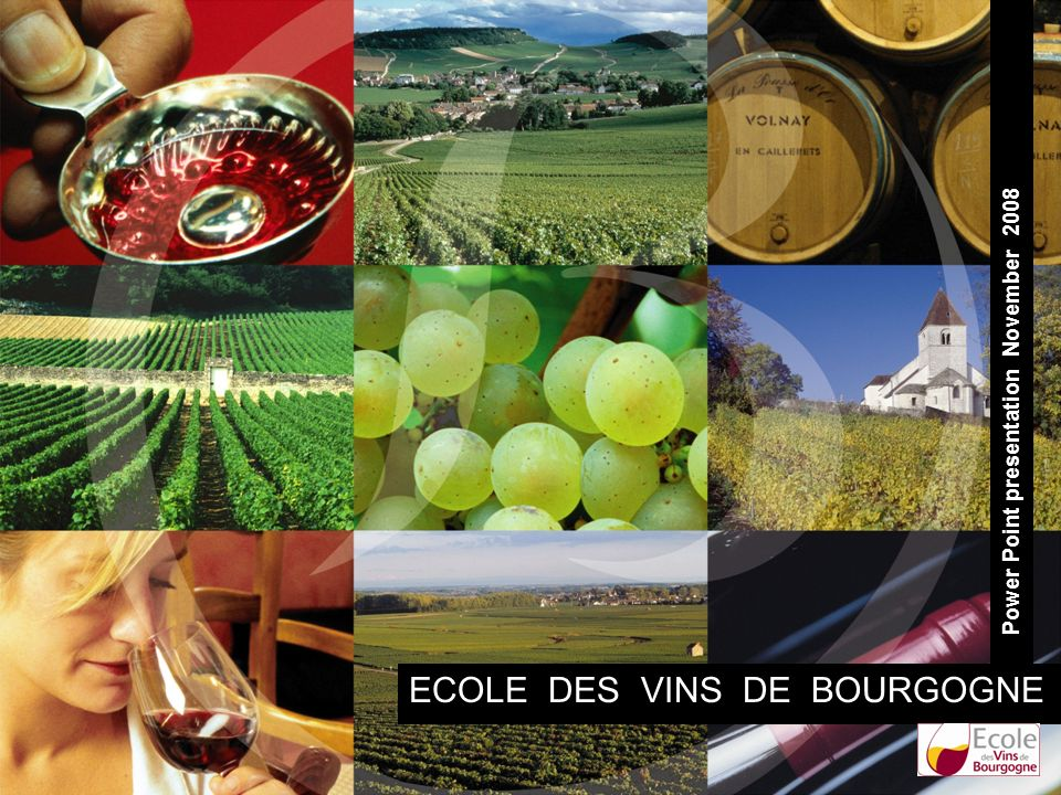 ECOLE DES VINS DE BOURGOGNE Power Point presentation November 2008