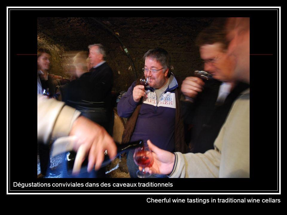 Visites de domaines et de caves authentiques Visits to authentic wineries and wine cellars