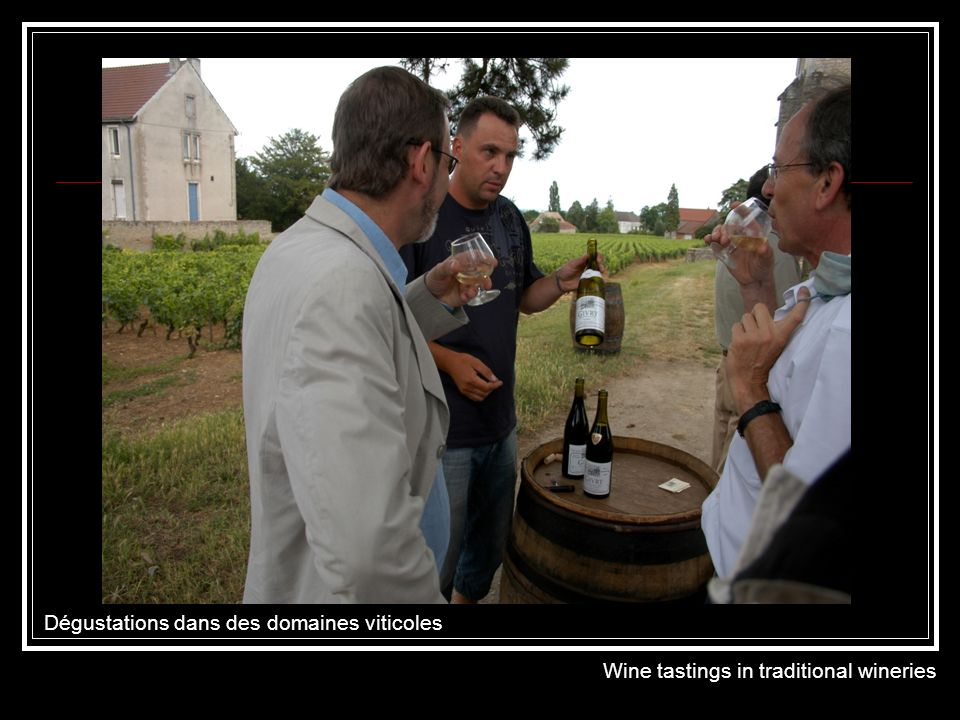 Dégustations dans une cave de vigneron Wine tastings in a wine-makers cellar