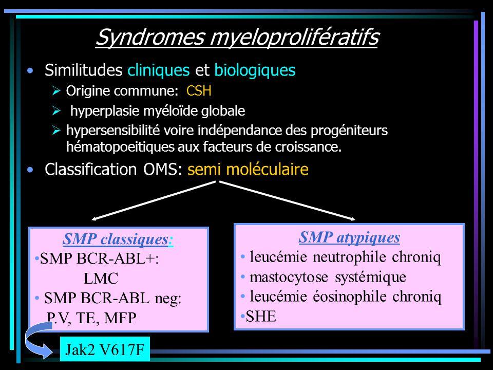 Syndromes myeloprolifératifs Similitudes cliniques et biologiques Origine commune: CSH hyperplasie myéloïde globale hypersensibilité voire indépendanc