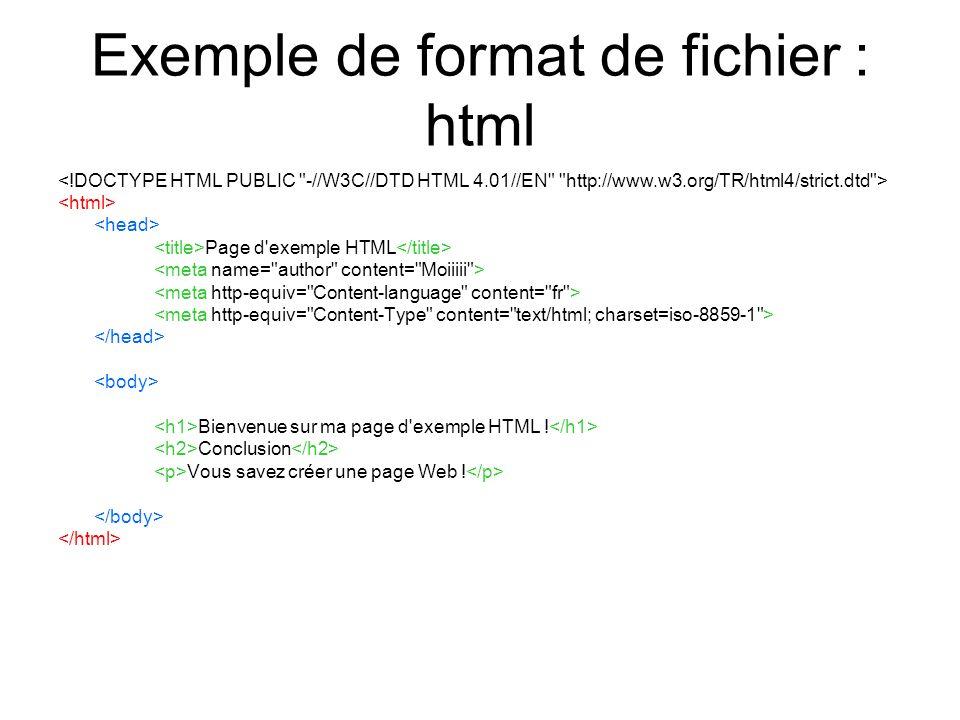 Exemple de format de fichier : html Page d'exemple HTML Bienvenue sur ma page d'exemple HTML ! Conclusion Vous savez créer une page Web !