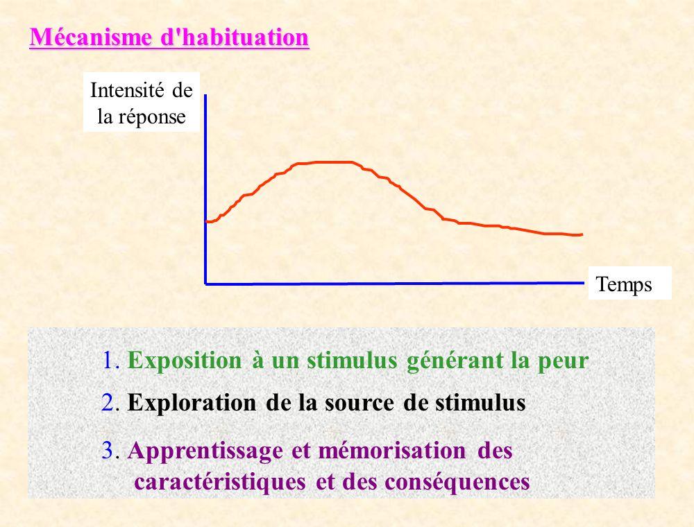 Mécanisme d'habituation Intensité de la réponse Temps 1. Exposition à un stimulus générant la peur 2. Exploration de la source de stimulus 3. Apprenti