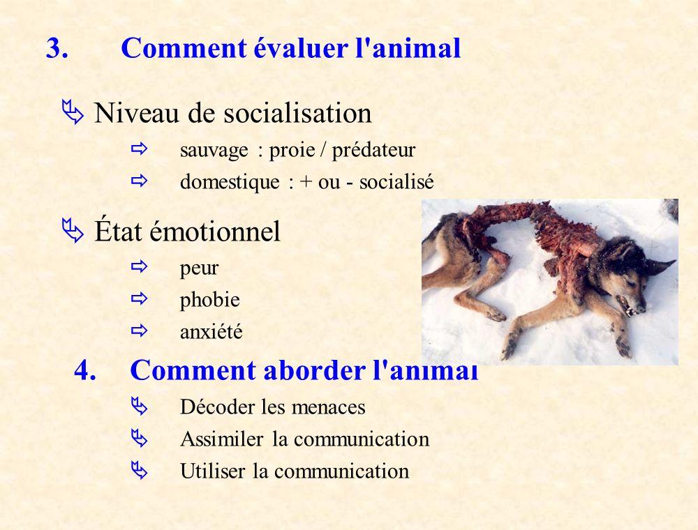 3. Comment évaluer l'animal Niveau de socialisation sauvage : proie / prédateur domestique : + ou - socialisé État émotionnel peur phobie anxiété 4.Co