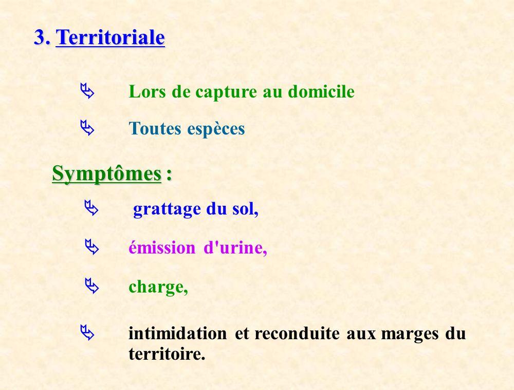 3. Territoriale Lors de capture au domicile Toutes espèces Symptômes : Symptômes : grattage du sol, émission d'urine, charge, intimidation et recondui