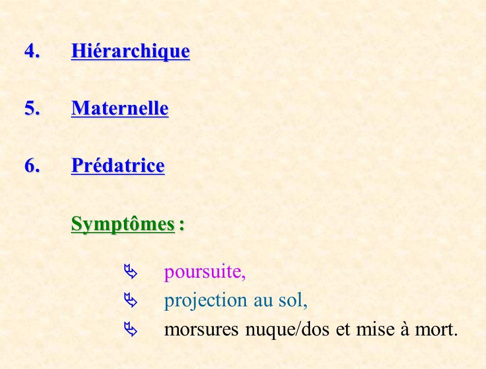4. Hiérarchique 5.Maternelle 6. Prédatrice Symptômes : poursuite, projection au sol, morsures nuque/dos et mise à mort.