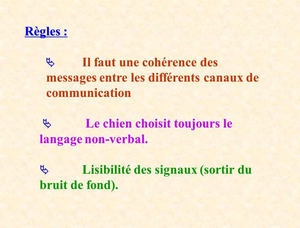 Règles : Il faut une cohérence des messages entre les différents canaux de communication Le chien choisit toujours le langage non-verbal. Lisibilité d