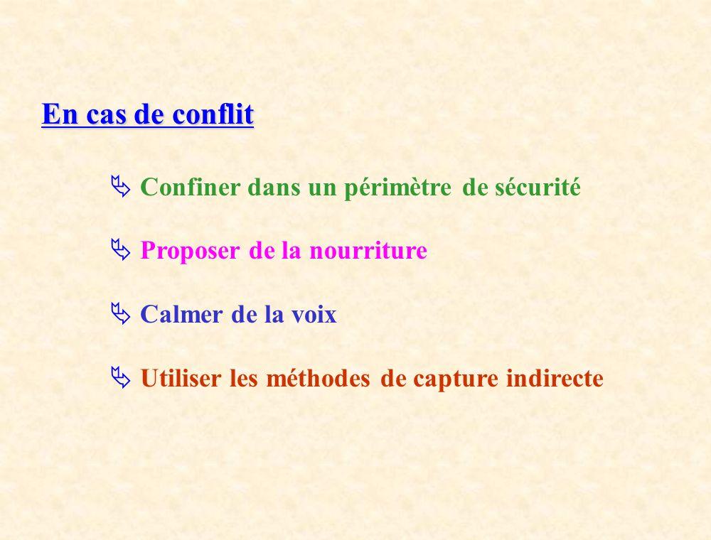 En cas de conflit Confiner dans un périmètre de sécurité Proposer de la nourriture Calmer de la voix Utiliser les méthodes de capture indirecte