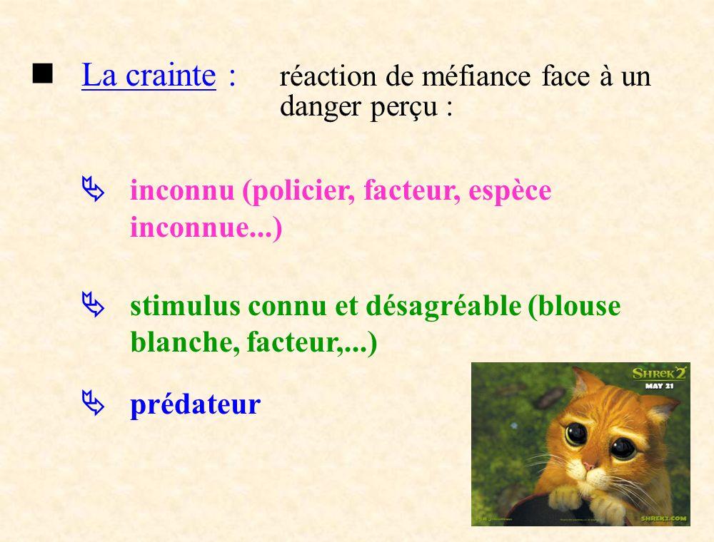 La crainte : réaction de méfiance face à un danger perçu : inconnu (policier, facteur, espèce inconnue...) stimulus connu et désagréable (blouse blanc