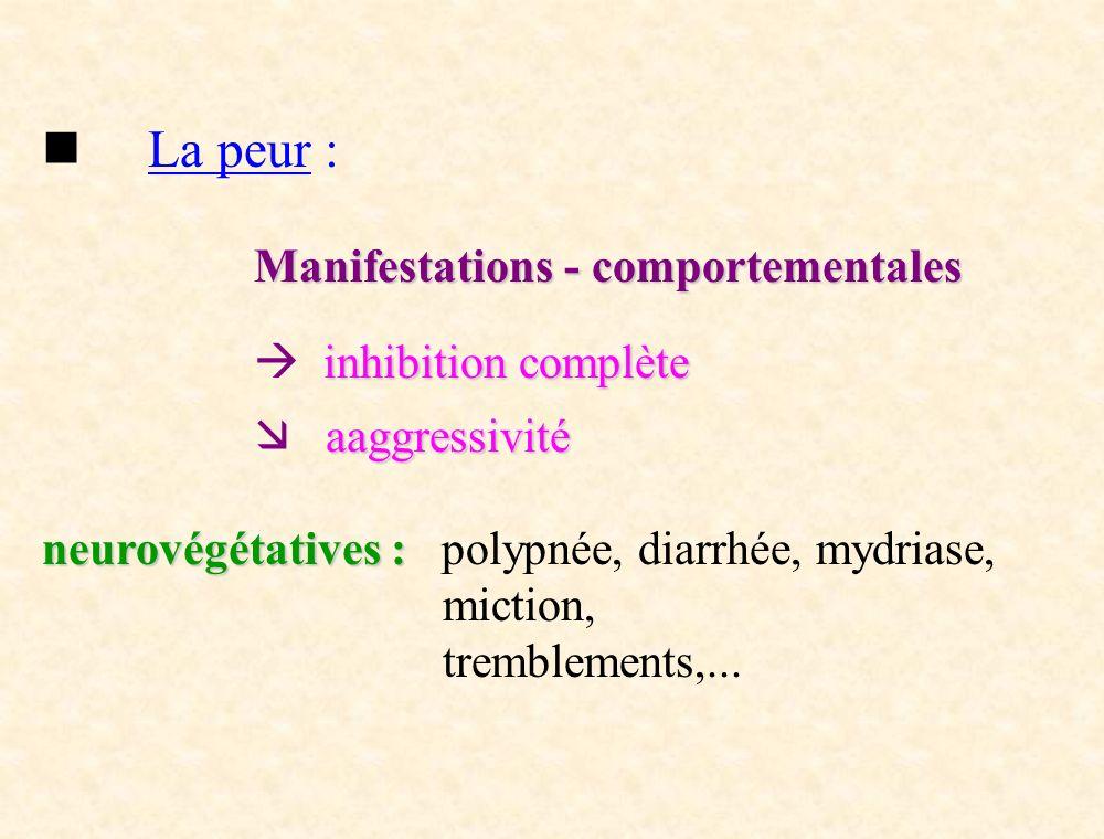 La peur : Manifestations - comportementales inhibition complète aaggressivité neurovégétatives : neurovégétatives : polypnée, diarrhée, mydriase, mict