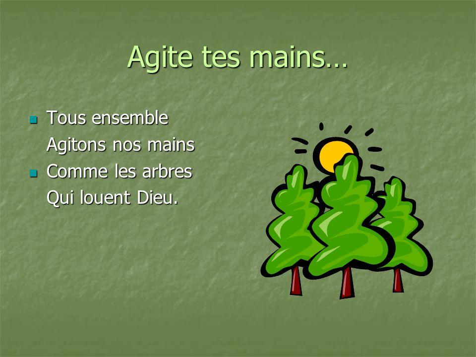 Agite tes mains… Tous ensemble Tous ensemble Agitons nos mains Comme les arbres Comme les arbres Qui louent Dieu.