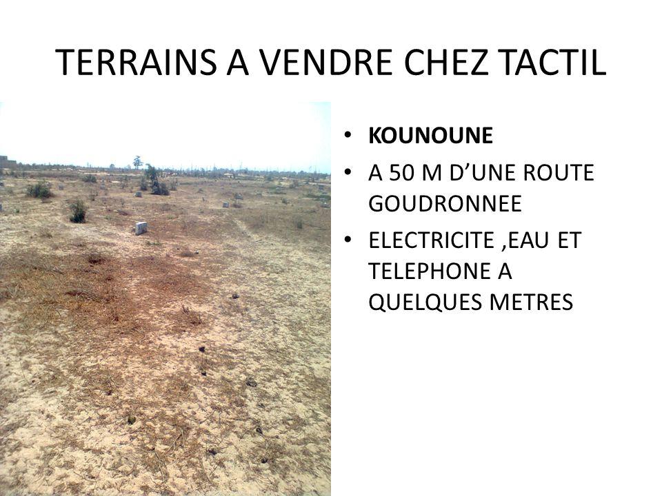 TERRAINS A VENDRE CHEZ TACTIL KOUNOUNE A 50 M DUNE ROUTE GOUDRONNEE ELECTRICITE,EAU ET TELEPHONE A QUELQUES METRES