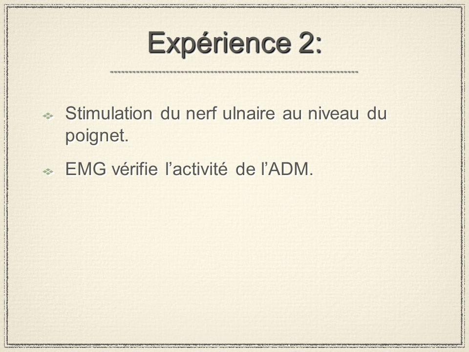 Expérience 2: Stimulation du nerf ulnaire au niveau du poignet.