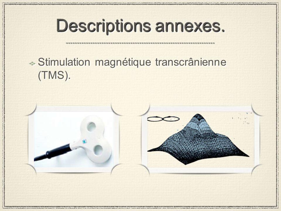 Descriptions annexes.Electromyogramme (EMG). Premier interosseux digital (FDI).
