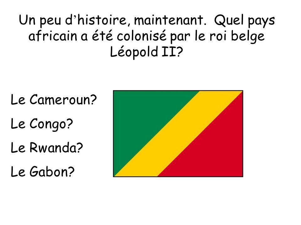 Un peu d histoire, maintenant. Quel pays africain a été colonisé par le roi belge Léopold II? Le Cameroun? Le Congo? Le Rwanda? Le Gabon?