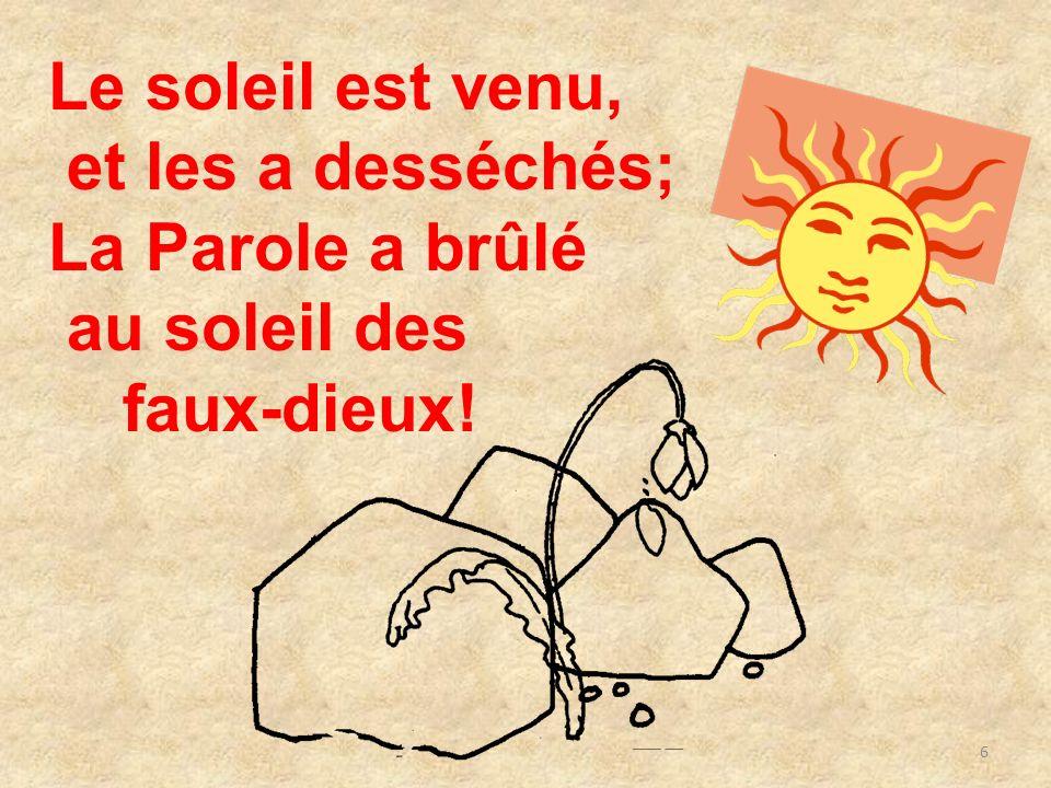 6 Le soleil est venu, et les a desséchés; La Parole a brûlé au soleil des faux-dieux!