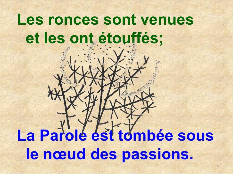 9 Les ronces sont venues et les ont étouffés; La Parole est tombée sous le nœud des passions.