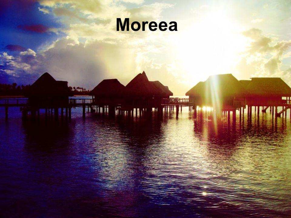Moreea