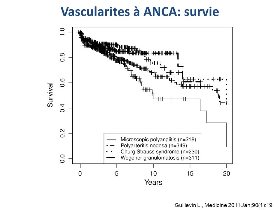 Vascularites à ANCA: survie Guillevin L., Medicine 2011 Jan;90(1):19