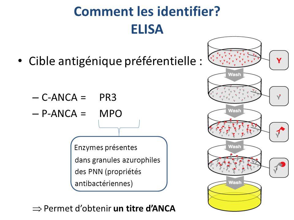 Cible antigénique préférentielle : – C-ANCA = PR3 – P-ANCA = MPO Enzymes présentes dans granules azurophiles des PNN (propriétés antibactériennes) Per
