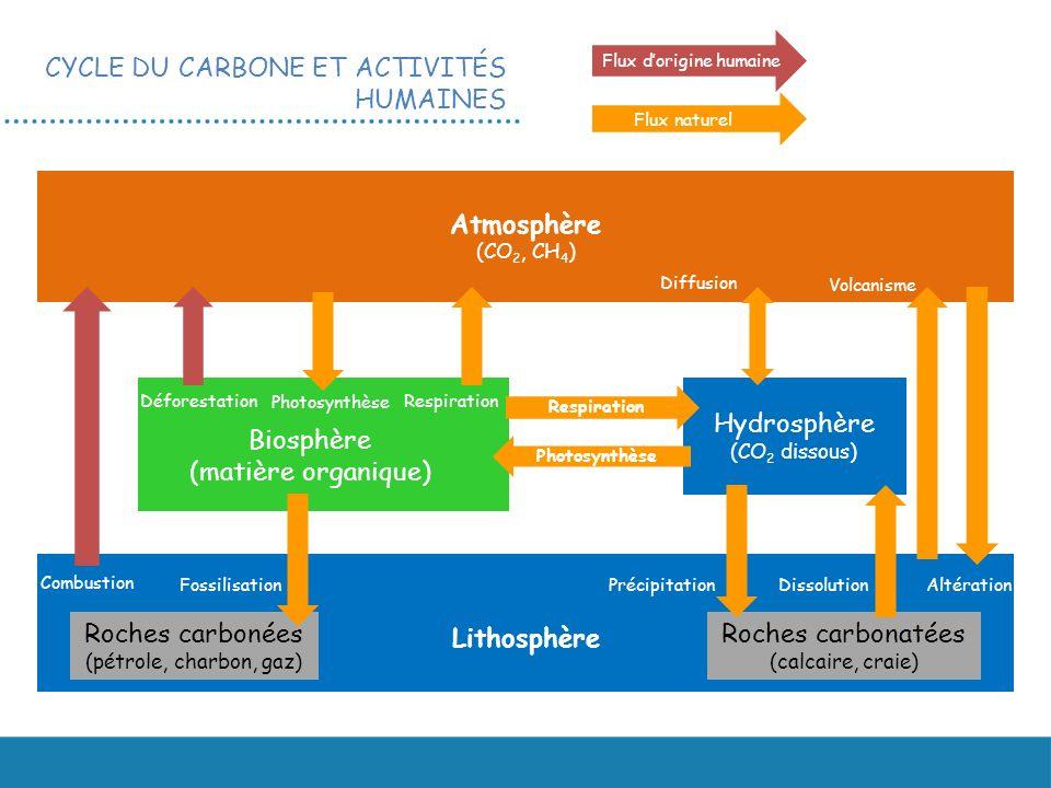 CYCLE DU CARBONE ET ACTIVITÉS HUMAINES Atmosphère (CO 2, CH 4 ) Hydrosphère (CO 2 dissous) Lithosphère Roches carbonées (pétrole, charbon, gaz) Roches