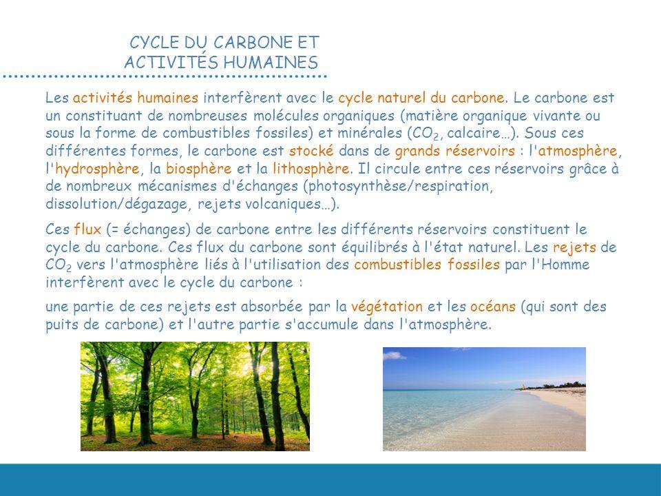 Les activités humaines interfèrent avec le cycle naturel du carbone. Le carbone est un constituant de nombreuses molécules organiques (matière organiq