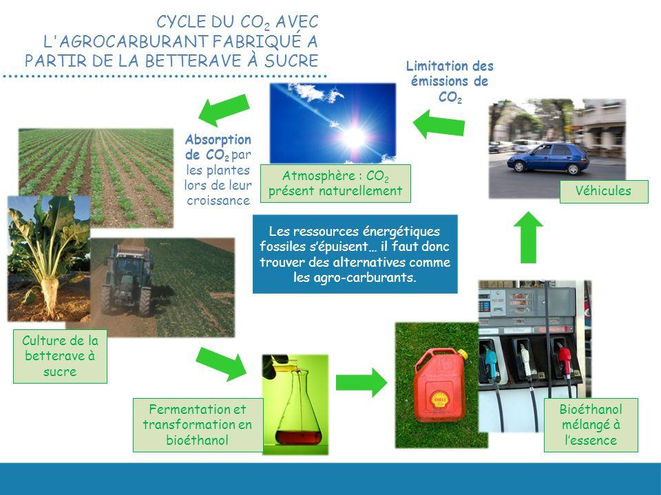 CYCLE DU CO 2 AVEC L'AGROCARBURANT FABRIQUÉ A PARTIR DE LA BETTERAVE À SUCRE Atmosphère : CO 2 présent naturellement Culture de la betterave à sucre F