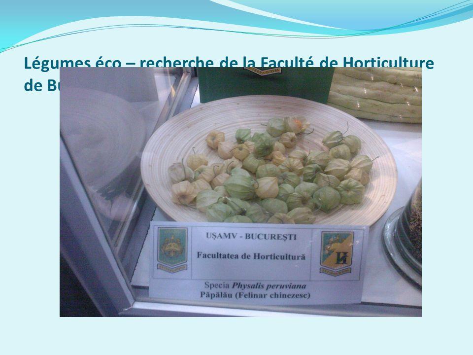 Légumes éco – recherche de la Faculté de Horticulture de Bucarest