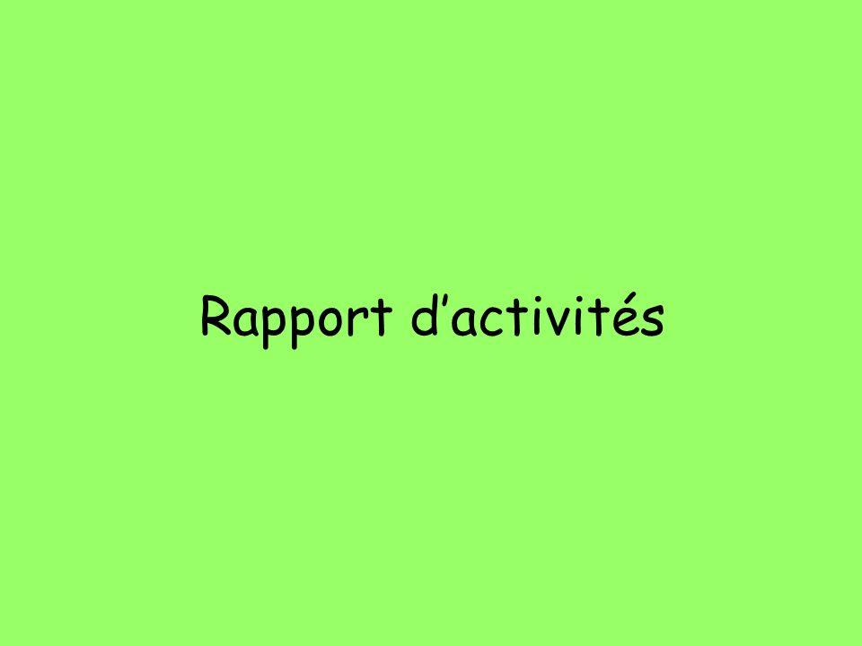 Rapport dactivités