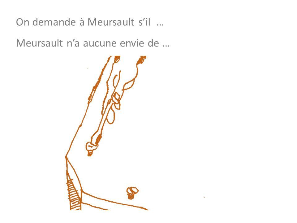 On demande à Meursault sil … Meursault na aucune envie de …