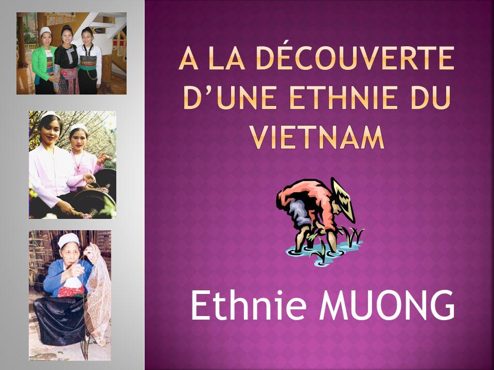 Ethnie MUONG
