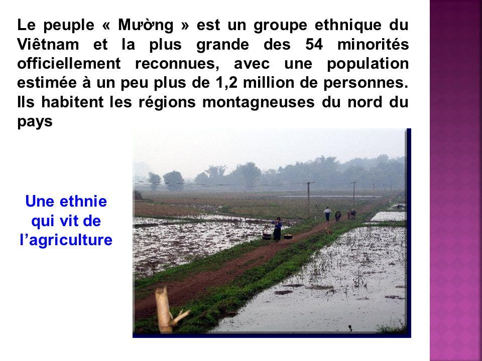 Le peuple « Mưng » est un groupe ethnique du Viêtnam et la plus grande des 54 minorités officiellement reconnues, avec une population estimée à un peu