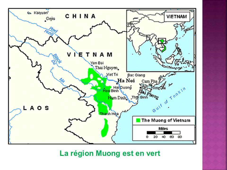 La région Muong est en vert
