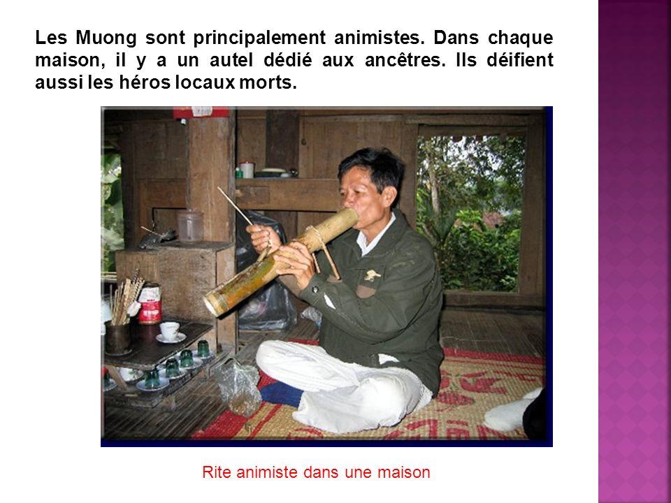 Les Muong sont principalement animistes. Dans chaque maison, il y a un autel dédié aux ancêtres. Ils déifient aussi les héros locaux morts. Rite animi
