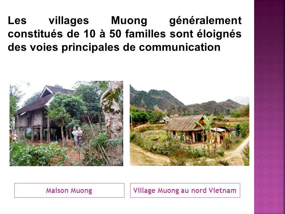 Maison MuongVillage Muong au nord Vietnam Les villages Muong généralement constitués de 10 à 50 familles sont éloignés des voies principales de commun