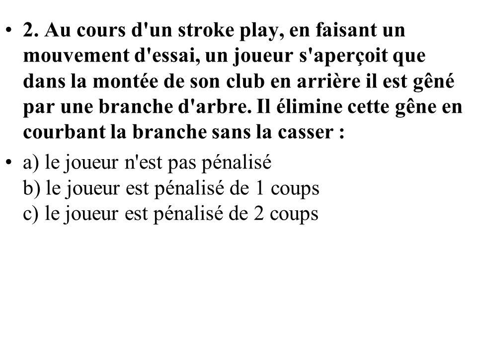 2. Au cours d'un stroke play, en faisant un mouvement d'essai, un joueur s'aperçoit que dans la montée de son club en arrière il est gêné par une bran
