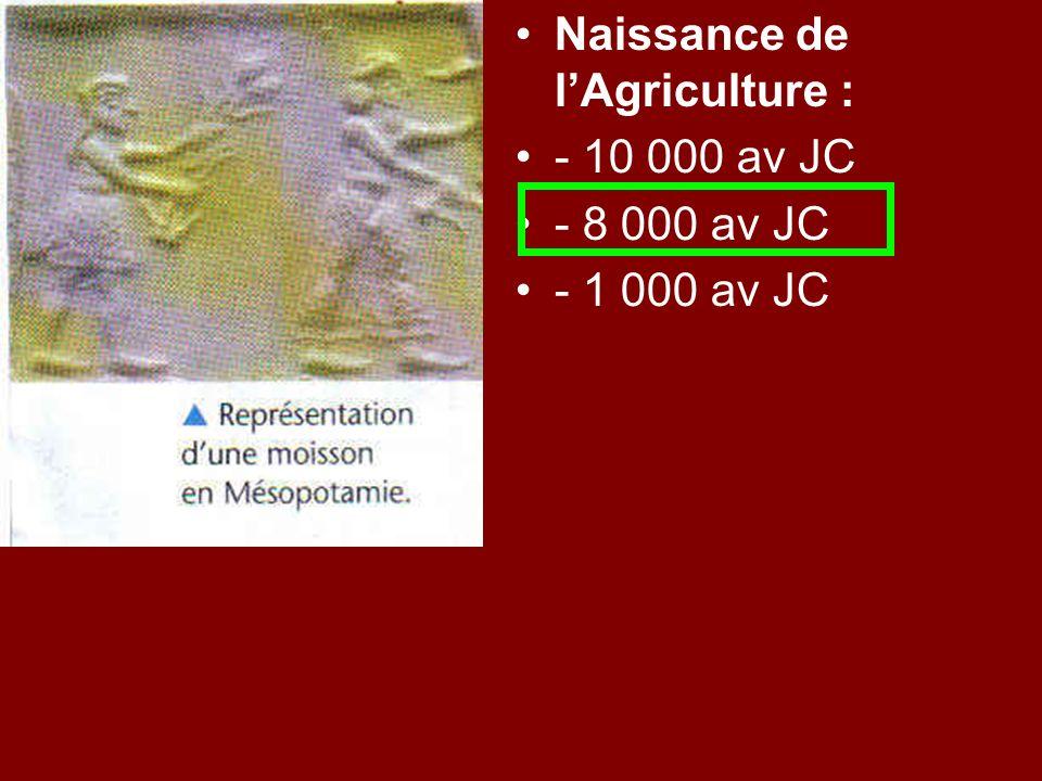 Naissance de lAgriculture : - 10 000 av JC - 8 000 av JC - 1 000 av JC