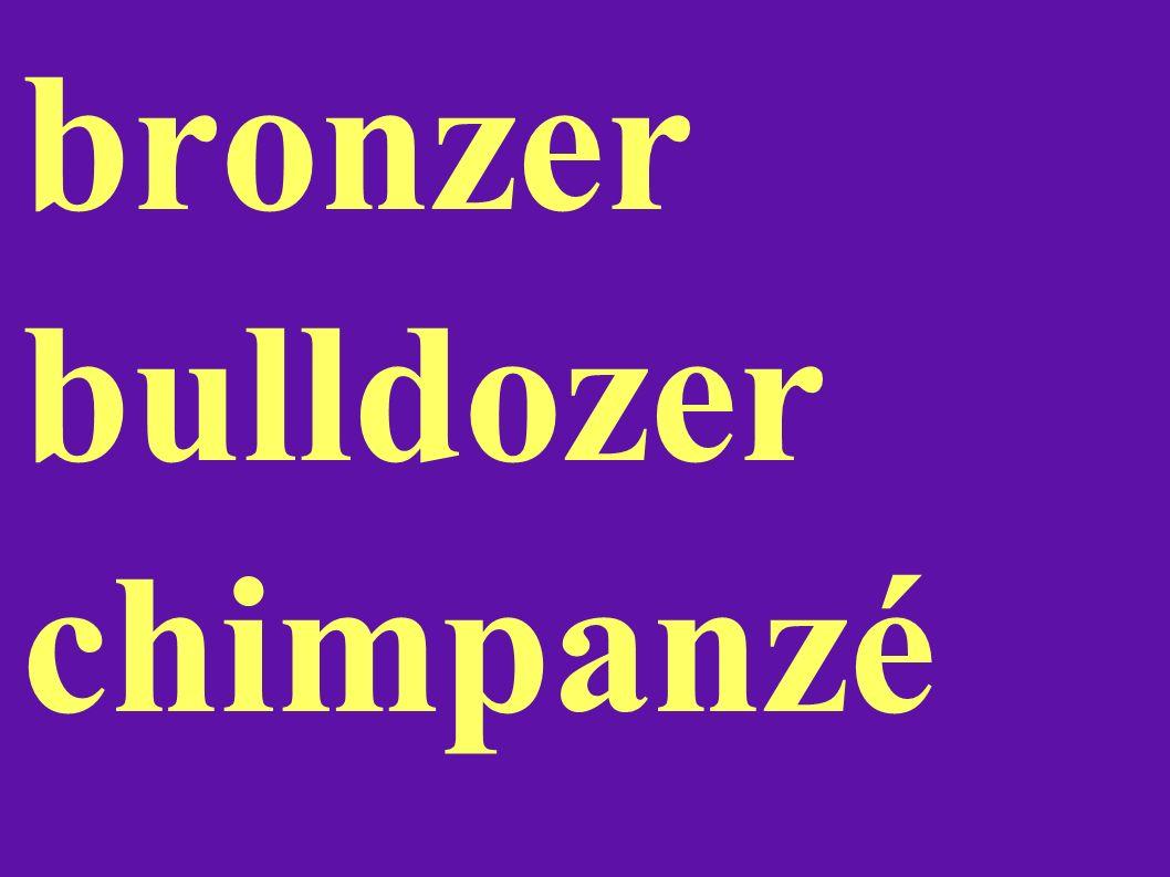 bronzer bulldozer chimpanzé