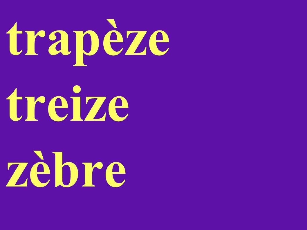 trapèze treize zèbre