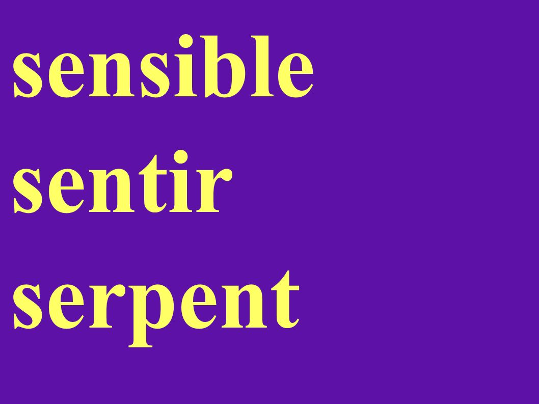 sensible sentir serpent