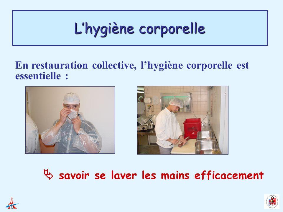 En restauration collective, lhygiène corporelle est essentielle : savoir se laver les mains efficacement Lhygiène corporelle